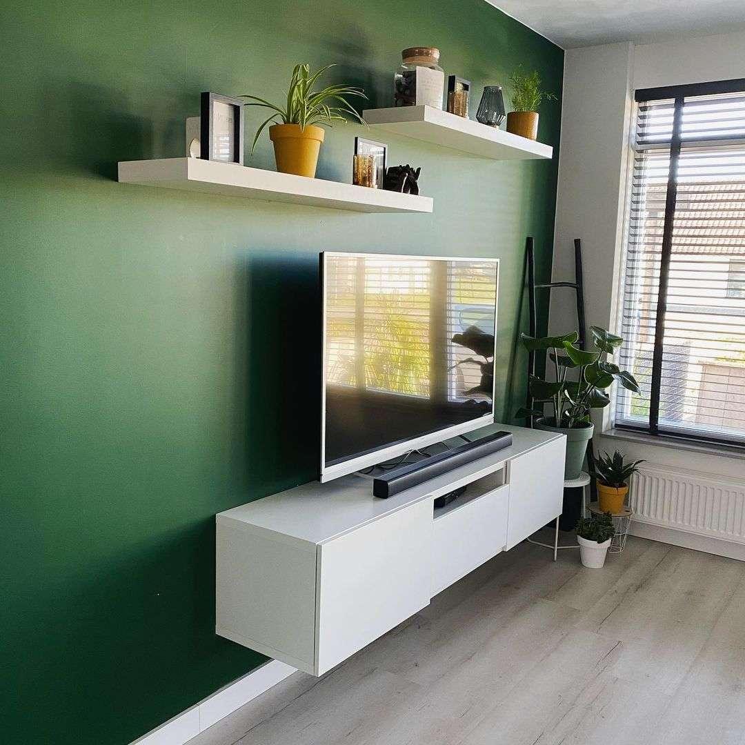 Groene muur, groene muur woonkamer, binnenplanten, wonen in de regio